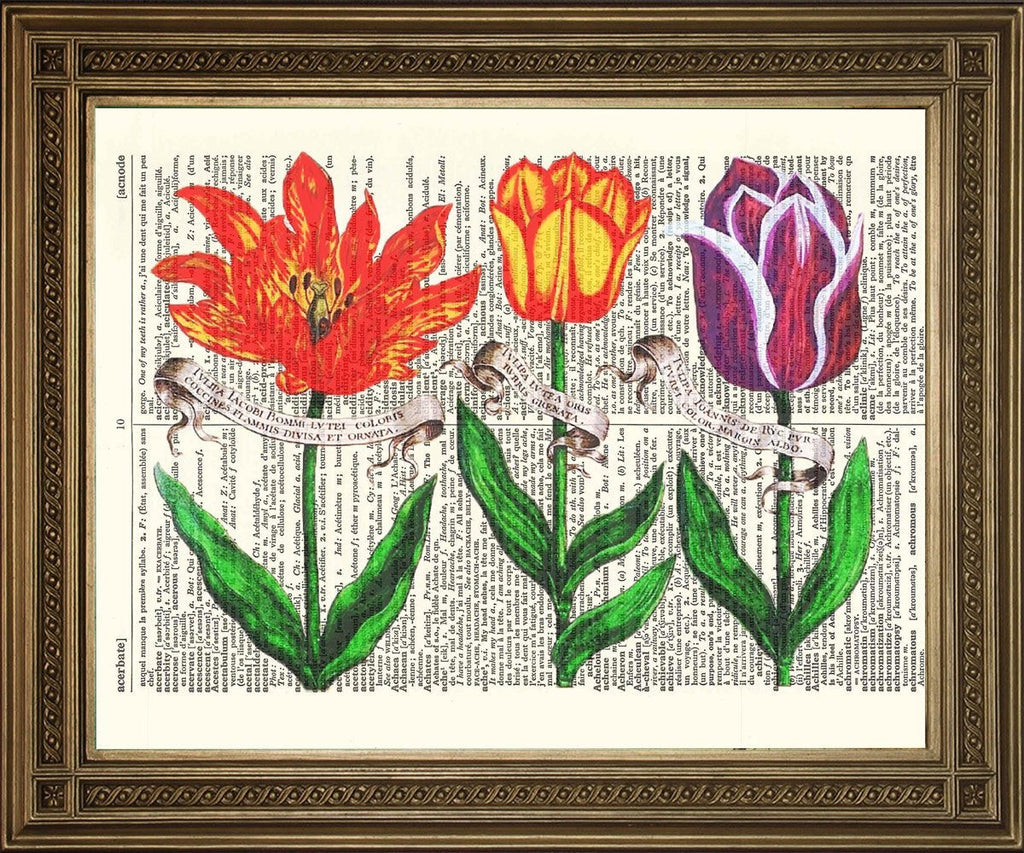 TULIP FLOWERS: Vintage Dictionary Page Art Print - The Print Arcade
