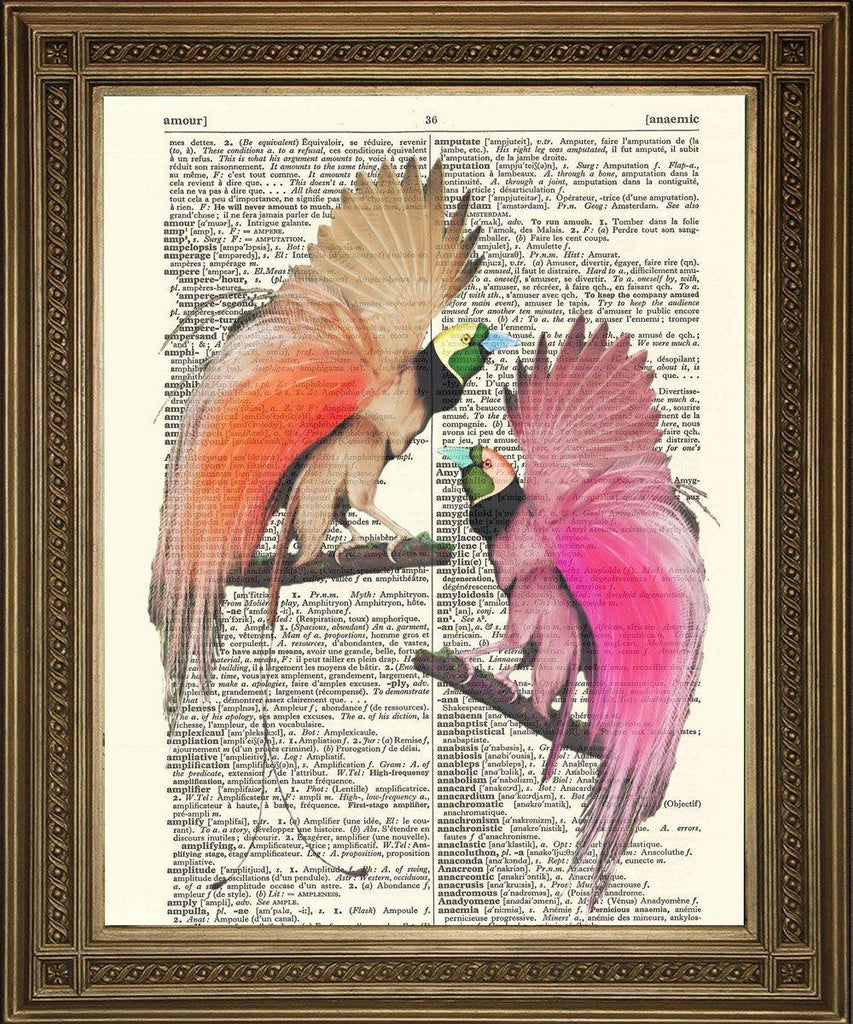 BIRDS OF PARADISE: Vintage Dictionary Book Page Art - The Print Arcade