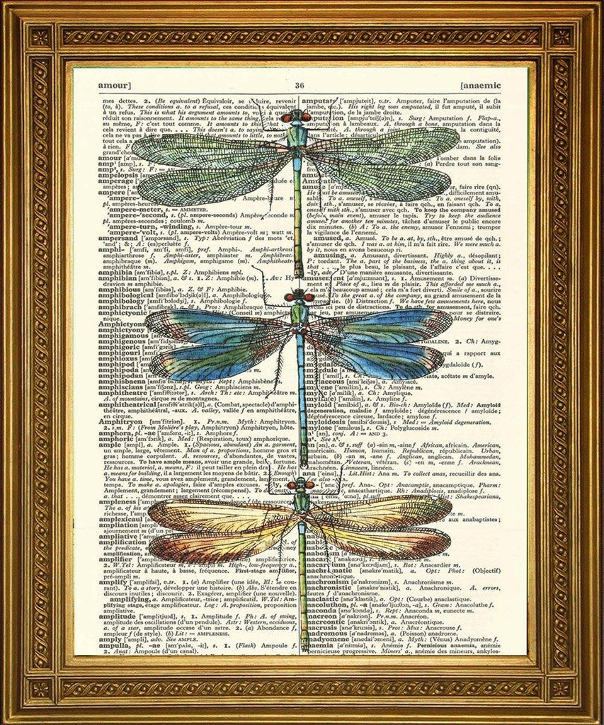 DRAGONFLIES PRINT: Original Vintage Dictionary Art - The Print Arcade