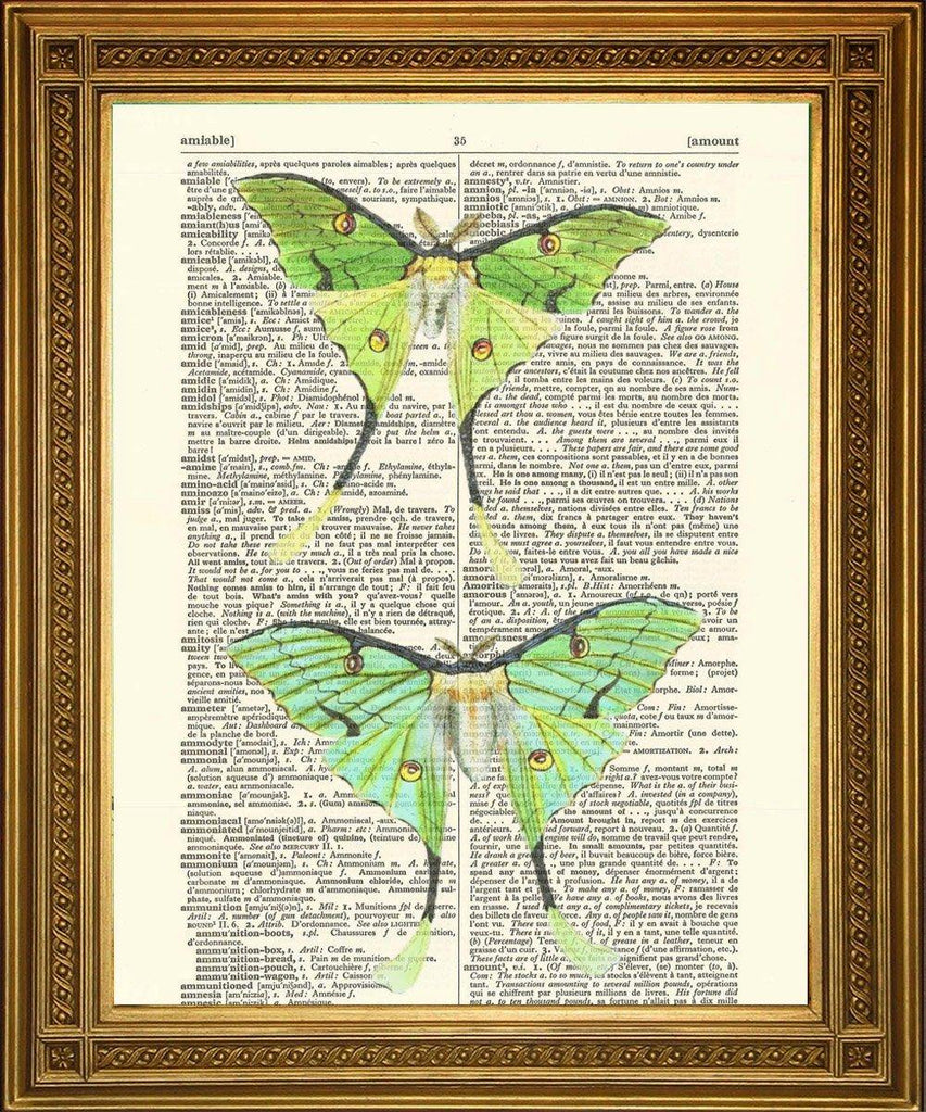 GREEN LUNA MOTH ART: Moon Moths Vintage Dictionary Page Print - The Print Arcade