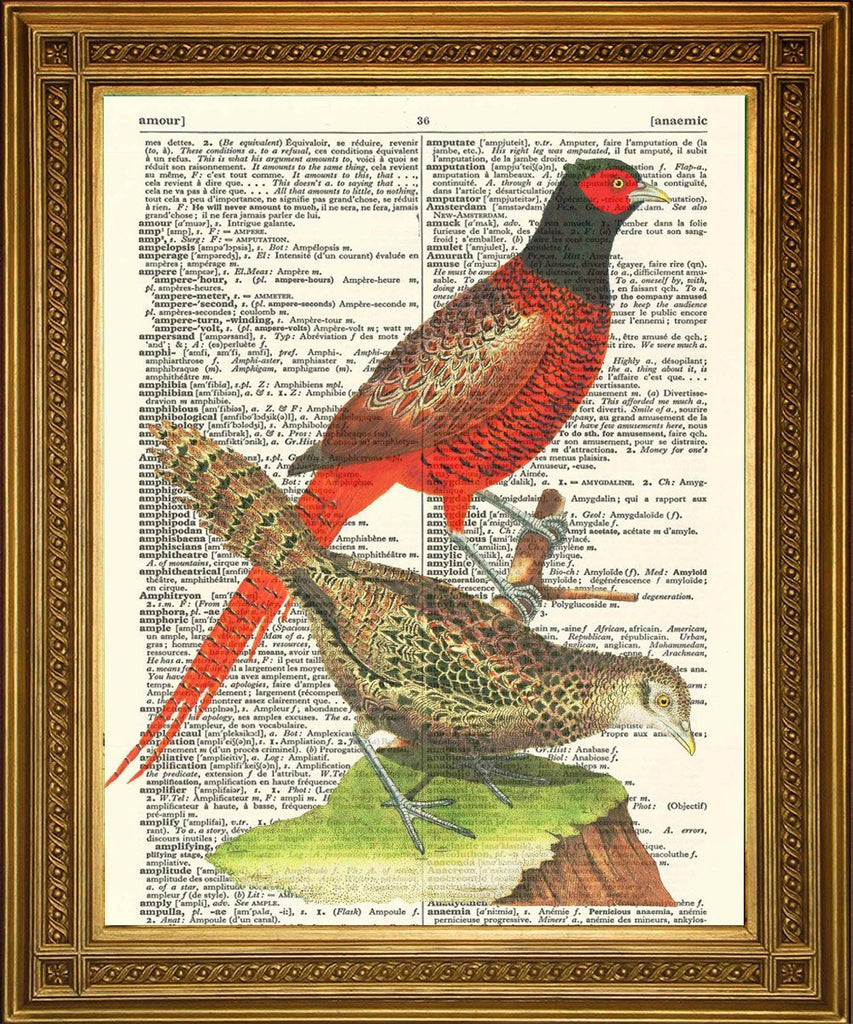PHEASANTS PRINT: Vintage Dictionary Book Page Bird Art - The Print Arcade