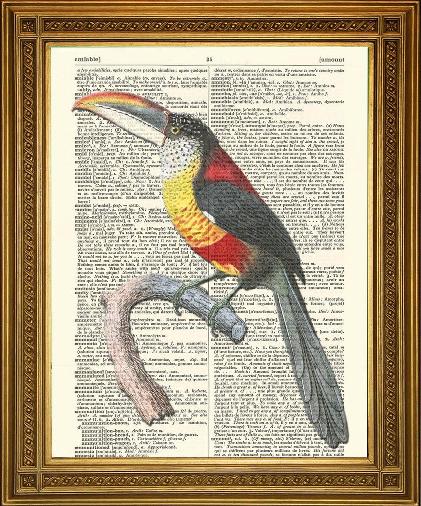 BIRD ART PRINTS: Toucan, Eagle, Swallow - Dictionary Prints - The Print Arcade