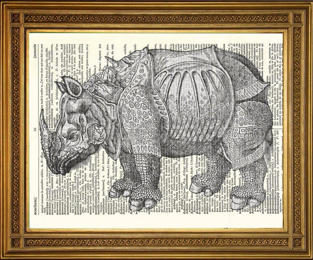 DURER'S RHINOCEROS PRINT: Vintage Dictionary Art - The Print Arcade