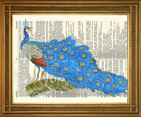 PEACOCK BIRD ART: Vintage Dictionary Print Wall Hanging - The Print Arcade