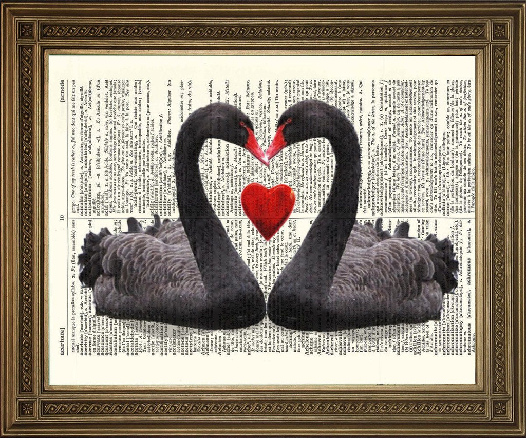 LOVE HEART SWANS: Black Birds Dictionary Art Print - The Print Arcade