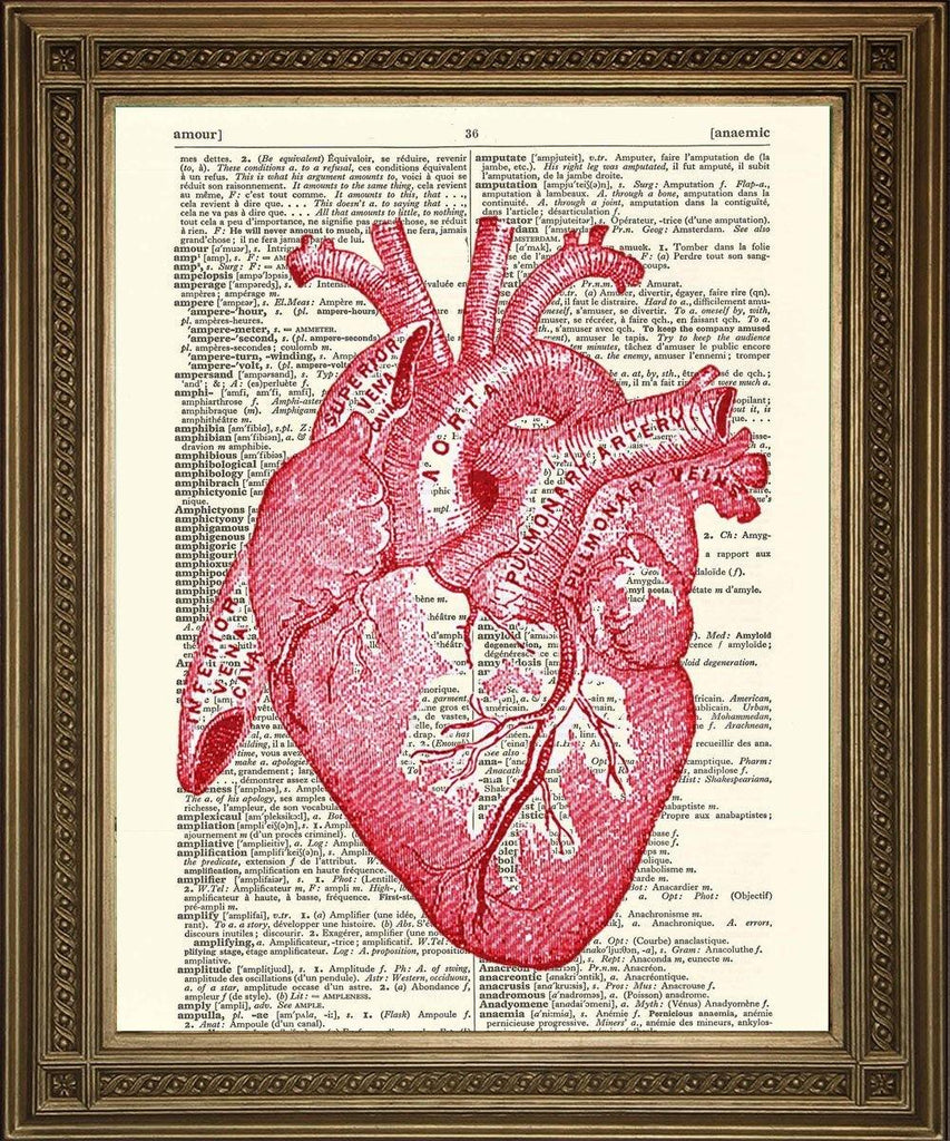HEART PRINT: Anatomical Dictionary Art Print - The Print Arcade