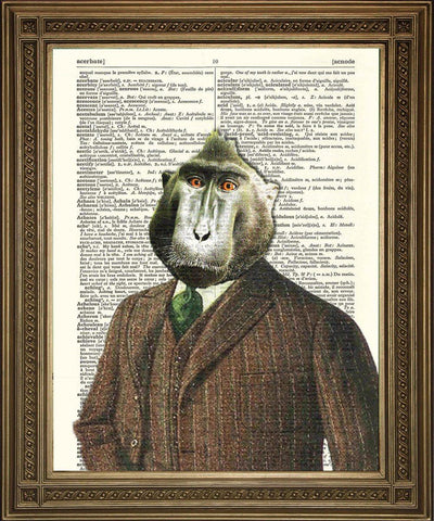 BABOON Dictionary Print: Fun Vintage Wall Decor - The Print Arcade