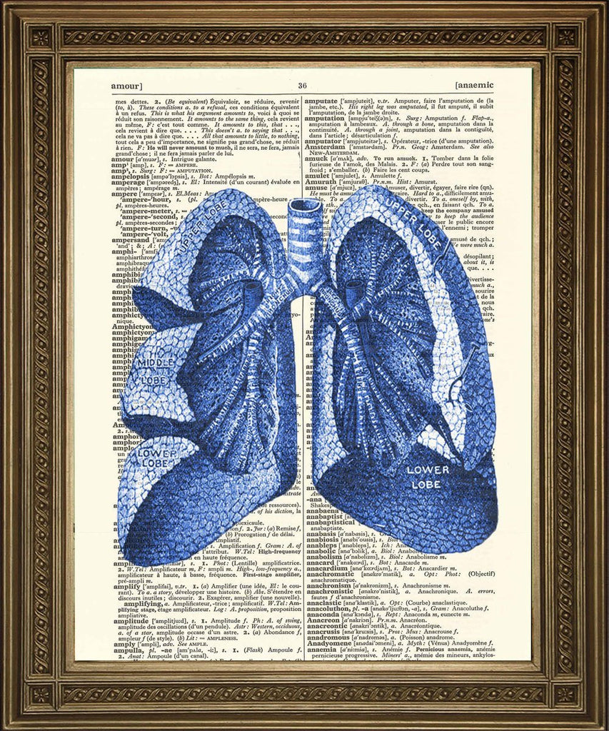 LUNGS ANATOMICAL DRAWING: Vintage Dictionary Art Print - The Print Arcade