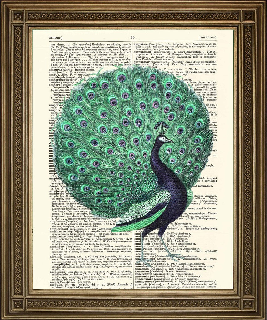 TURQUOISE PEACOCK ART: Vintage Bird Art Dictionary Print - The Print Arcade