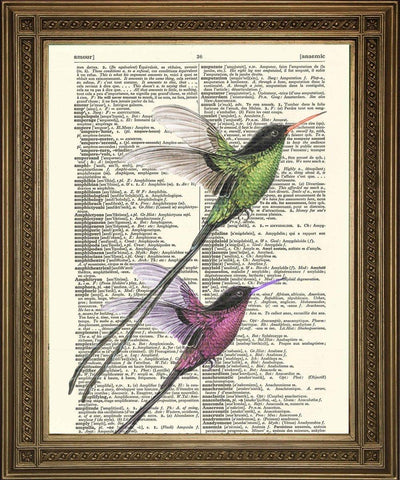 BIRD ART PRINT: Two Long Tail Birds Dictionary Art - The Print Arcade