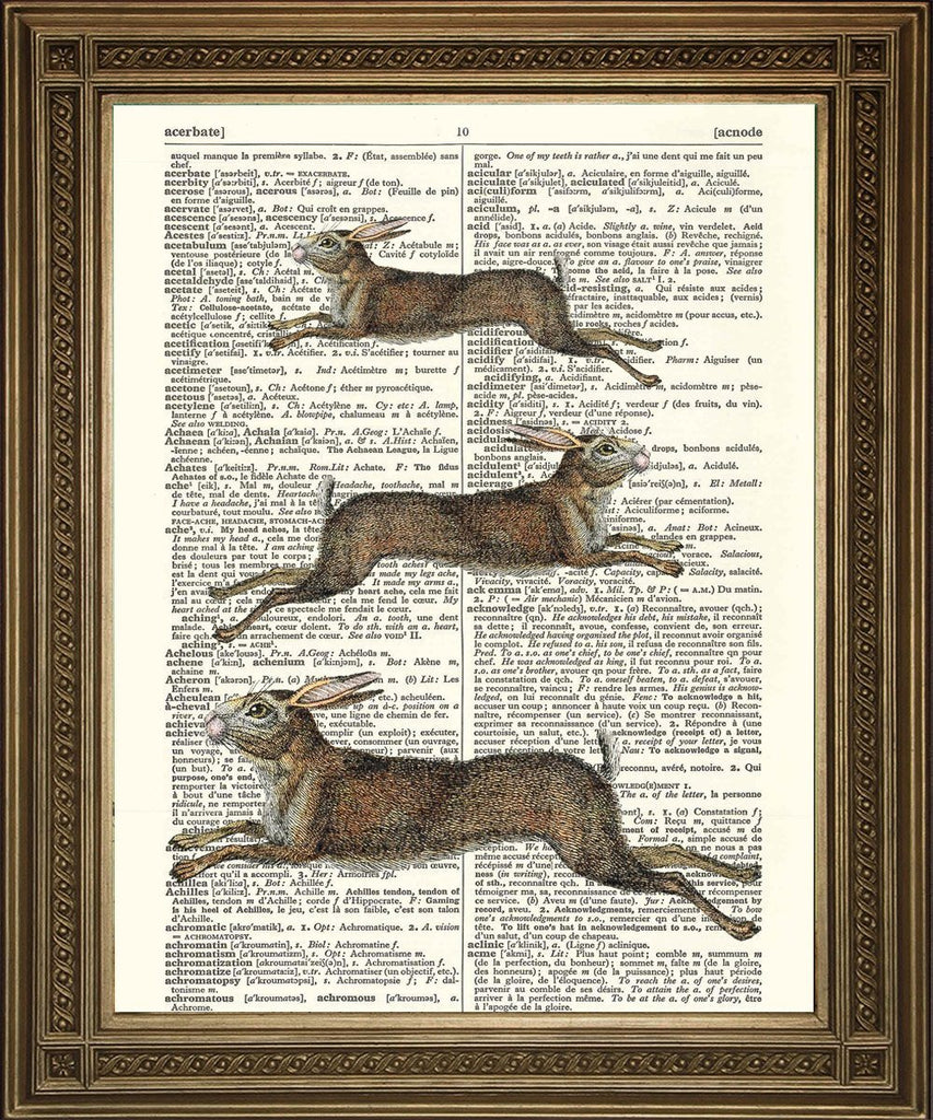 LEAPING HARES PRINT: Countryside Animal Dictionary Art - The Print Arcade