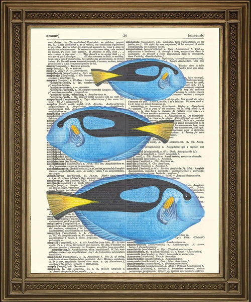 EXOTIC TROPICAL FISH ART: Choice of Fish - Dictionary Prints - The Print Arcade