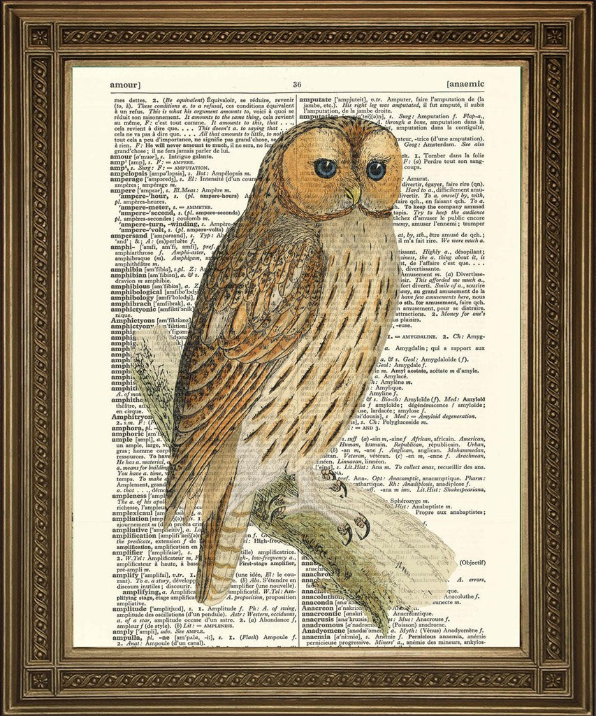 OWL BIRD PRINT: Brown Vintage Dictionary Art - The Print Arcade