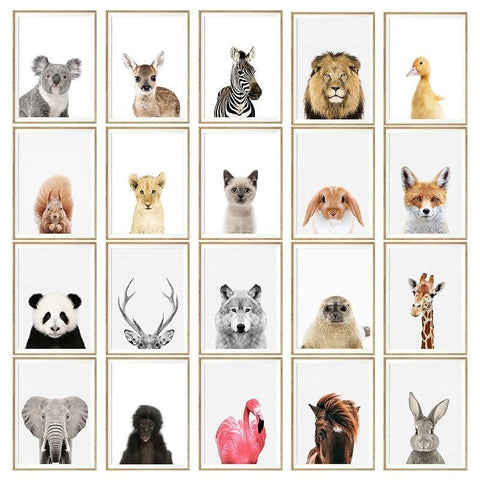 WILD ANIMAL POSTERS: Children's Nursery Wall Art Prints