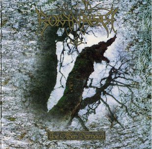 Borknagar - The Olden Domain CD