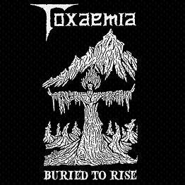 Toxaemia - Buried to Rise: 1990-1991 Discography DCD