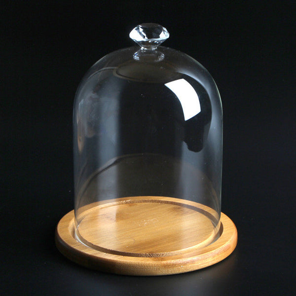 Glass Dome for Decoration