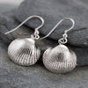 Silver Cockle Drop Earrings