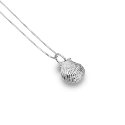 Baby Scallop Shell Pendant