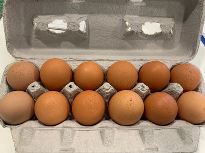 Pastured Eggs - Styrker Farm