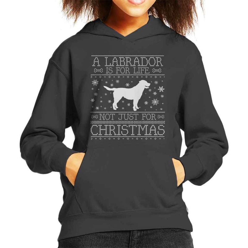 A Labrador Is For Life Not Just For Christmas Kid's Hooded Sweatshirt - coto7