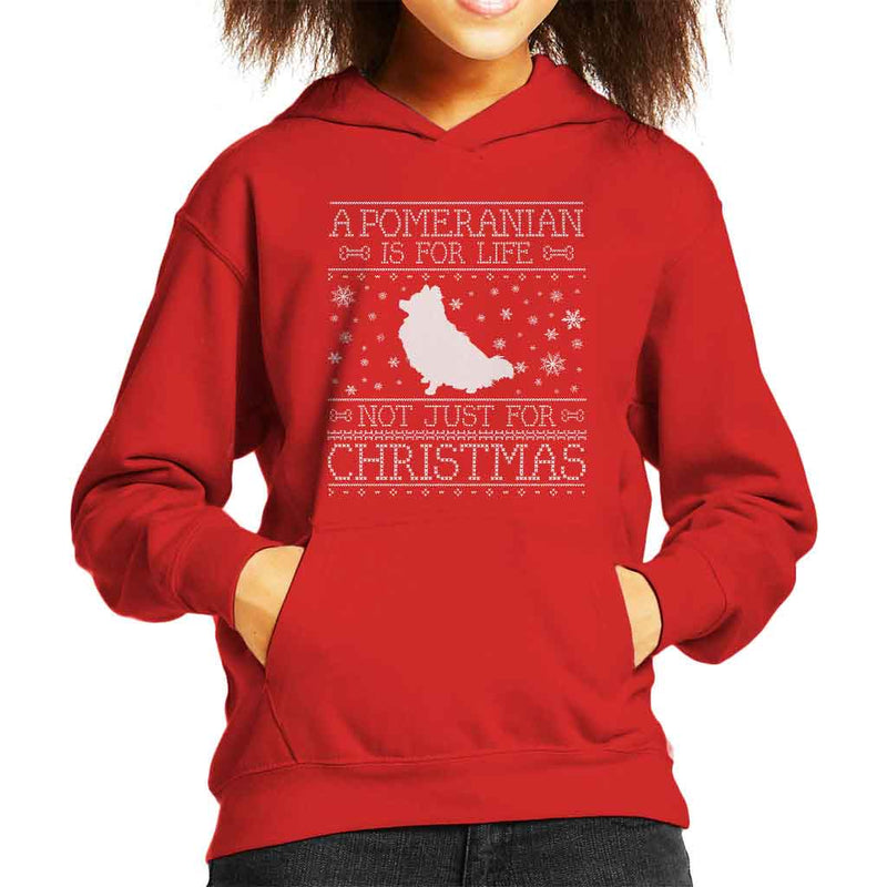 A Pomeranian Is For Life Not Just For Christmas Kid's Hooded Sweatshirt