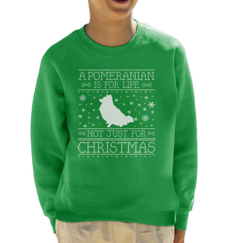A Pomeranian Is For Life Not Just For Christmas Kid's Sweatshirt - coto7