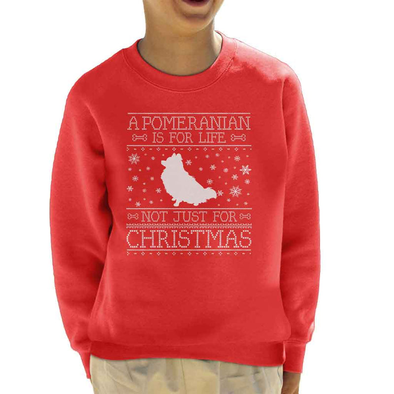 A Pomeranian Is For Life Not Just For Christmas Kid's Sweatshirt