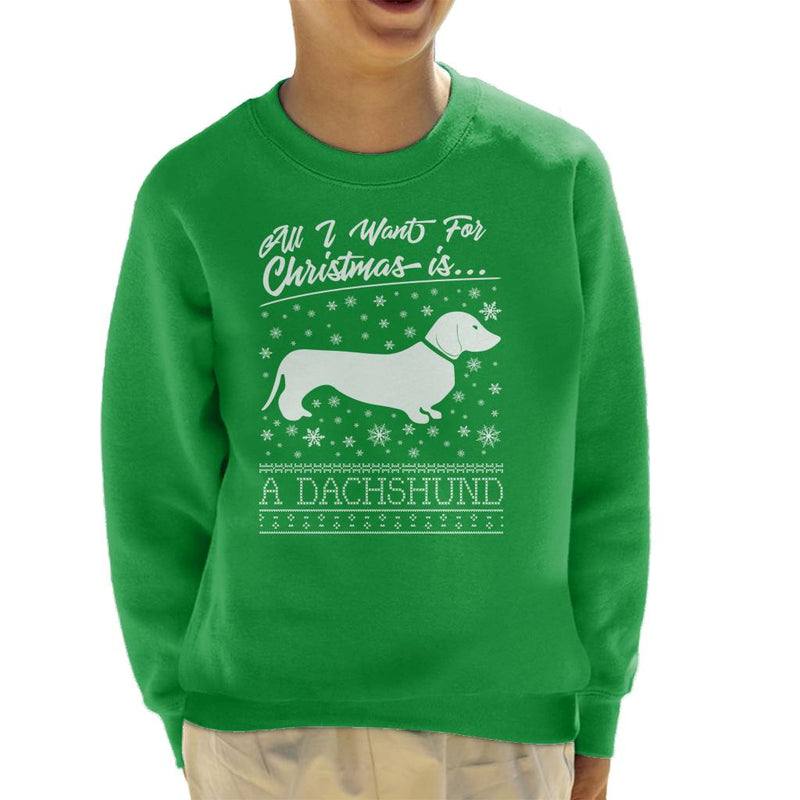 Coto7 Spaniel All I Want For Christmas Kids Sweatshirt