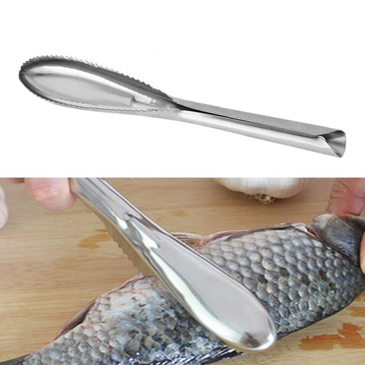 Innovative Stainless Steel Fish Scale Scraper/Remover