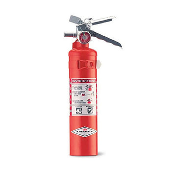 2.5lb Regular Dry Fire Extinguisher - Model B403T