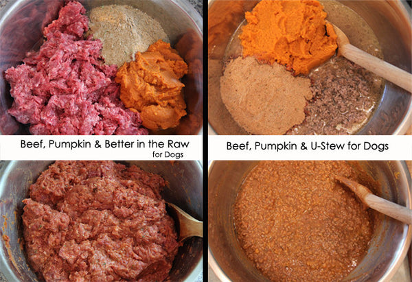 Homemade Dog Food - Raw or cooked