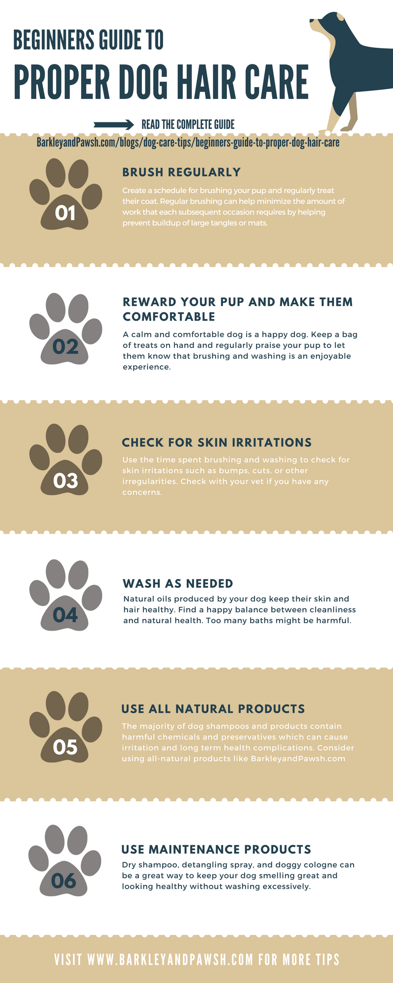 dog-hair-care-infographic