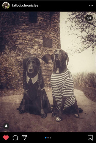 Barkley-and-Pawsh-Addams-family