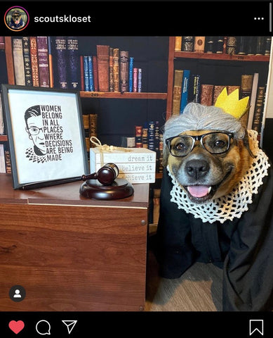 Barkley-and-Pawsh-RBG