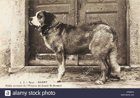 Barry-Saint-Bernard