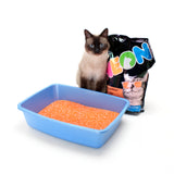 NEON Litter ORANGE 4 Pack