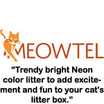 https://meowtel.com/site/neon_litter_has_us_raving