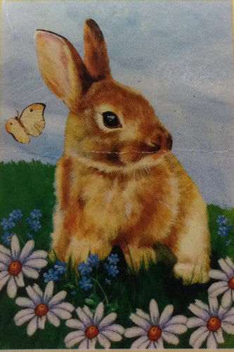 Brown Bunny House Flag
