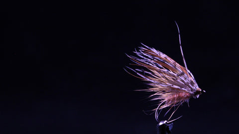 Egg Laying Caddis Fly Tying Tutorial