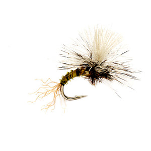 Birchell's Hatching Midge - East Rosebud Fly & Tackle - Free Shipping, No Sales Tax