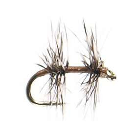 Fore & Aft - East Rosebud Fly & Tackle