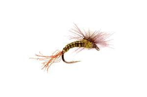 CDC Bud Emerger - East Rosebud Fly & Tackle - Free Shipping, No Sales Tax