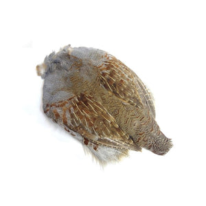#1 Natural Hungarian Partridge Skin - East Rosebud Fly & Tackle - Free Shipping, No Sales Tax