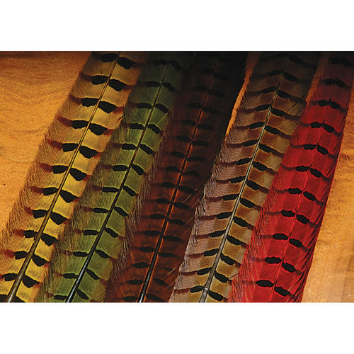 Ringneck Pheasant Tail Feathers - East Rosebud Fly & Tackle - Free Shipping, No Sales Tax