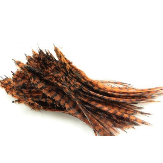 Barred Saddle Hackle