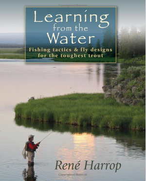 Learning from the Water - Rene Harrop