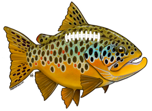 Brown Trout Football Decal - East Rosebud Fly & Tackle - Free Shipping, No Sales Tax