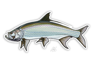 Tarpon Decal