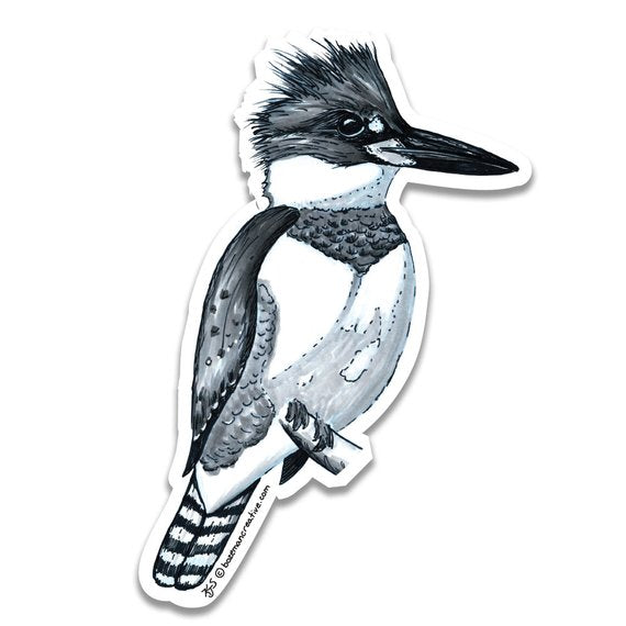 Kingfisher Sticker